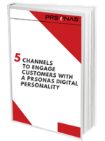 5 Channels for PRSONAS Digital Personalities ebook