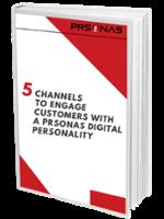 5 Channels for PRSONAS Digital Personalities ebook